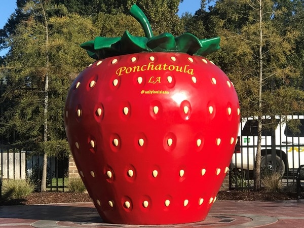 Ponchatoula is home to the annual Strawberry Festival