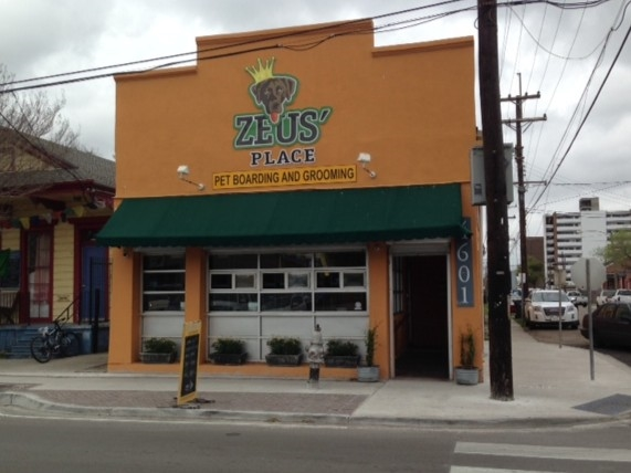 Zeus' Place - Pet boarding and grooming business along Freret Street Corridor in Uptown New Orleans