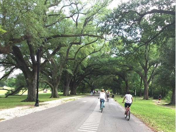 Scenic bike trail in Audubon Park