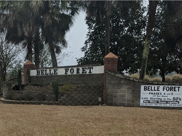 Belle Foret is located on Hwy 22 just west of Ponchatoula
