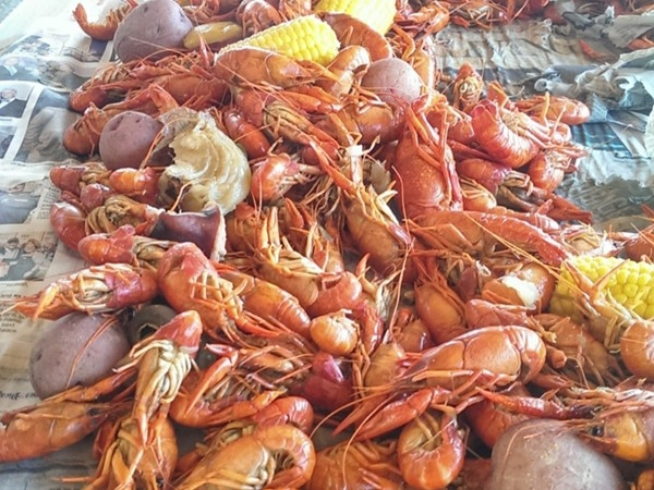 Crawfish boil at Fountainbleau State Park