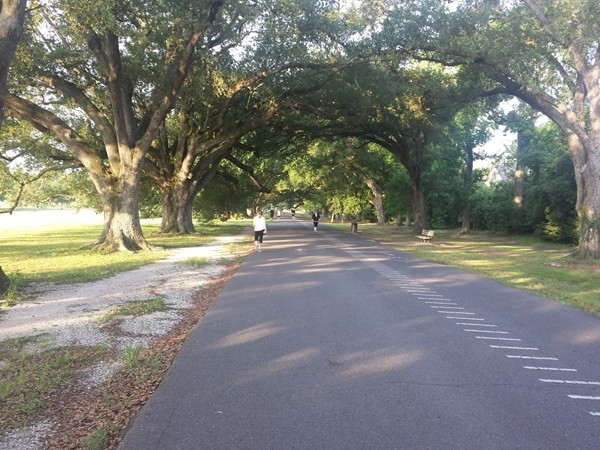 Walking path at Audubon Park, New Orleans